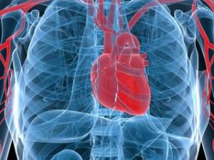 Cea mai mare descoperire medicală: bolnavii vor putea trăi 30 de minute fără să respire
